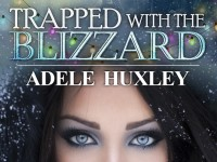Blog Tour & Giveaway: Trapped With The Blizzard by Adele Huxley