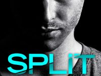 Blog Tour & Giveaway: Split by J.B. Salsbury