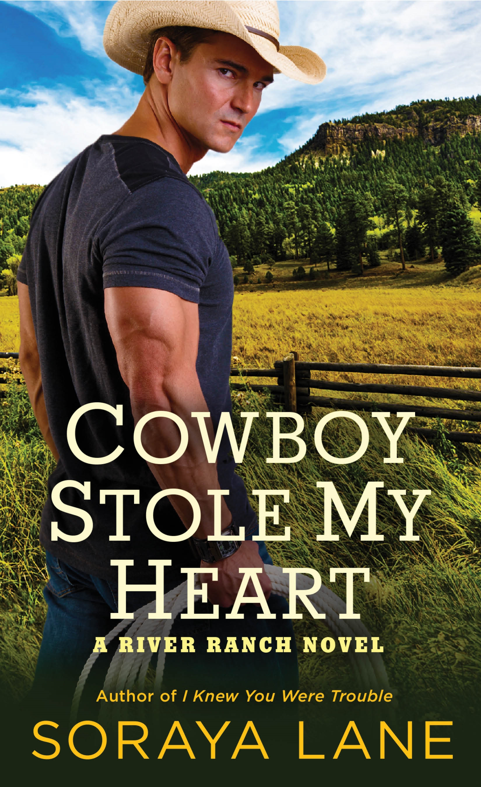 Blog Tour & Review: Cowboy Stole My Heart by Soraya Lane