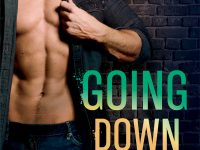 Blog Tour & Giveaway: Going Down Easy by Erin Nicholas