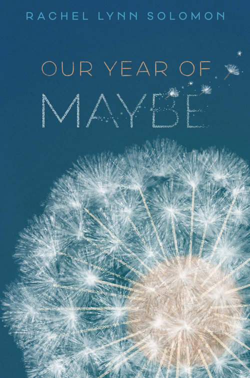 Blog Tour & Giveaway: Our Year of Maybe by Rachel Lynn Solomon