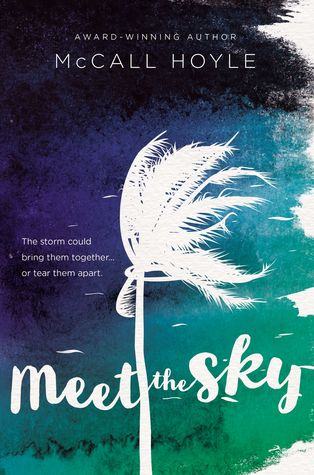 Summer Reading Tour & Giveaway: Meet The Sky by McCall Hoyle