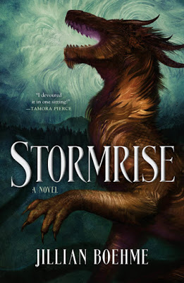 Blog Tour & Giveaway: Stormrise by Jillian Boehme
