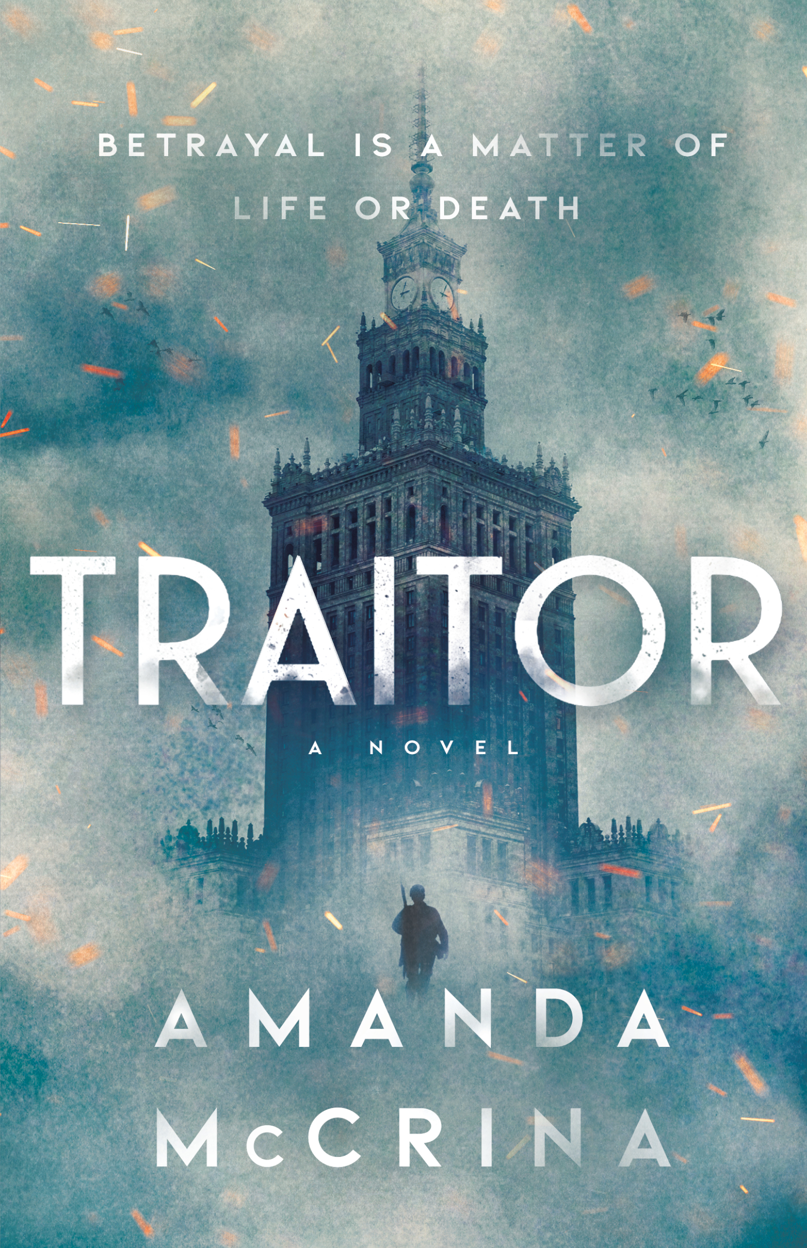 Blog Tour & Review: Traitor by Amanda McCrina