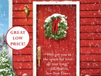 Blog Tour & Giveaway: Snowbound at Christmas by Debbie Mason