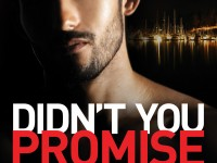 Cover Reveal & Giveaway: Didn't You Promise by Amber Bardan